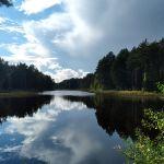 Льговский пруд, Хотынецкий район