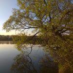 Озеро Красное, Хотынецкий район