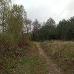 Трубечина (Алехино), Хотынецкий район
