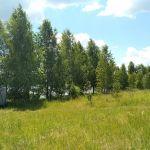 Разбегаевка, Знаменский район
