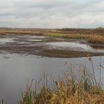 Озеро Новоселкинское, Шаблыкинский район
