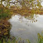Озеро Сомовское, Шаблыкинский район