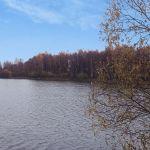 Студенка (Студеновка), Хотынецкий район