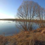 Жидкое (пруд на руч.Чеховский), Знаменский район