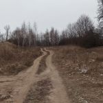 Красные рябинки (Коряжник, Ближний пруд), Хотынецкий район