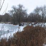 Большие Рябинки (Большой пруд), Хотынецкий район