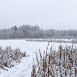 Озеро Большое (Каскад озер), Хотынецкий район