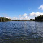 Воробьевский пруд, Свердловский район