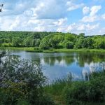 Вязки (Малый пруд), Орловский район