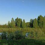 Козлы (Ефемовский), Орловский район