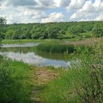 Вязки (Большой Абашевский пруд), Орловский район