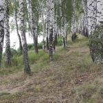 Моховое, Кромской район