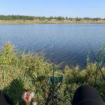 Челищевский пруд (Челищево), Урицкий район